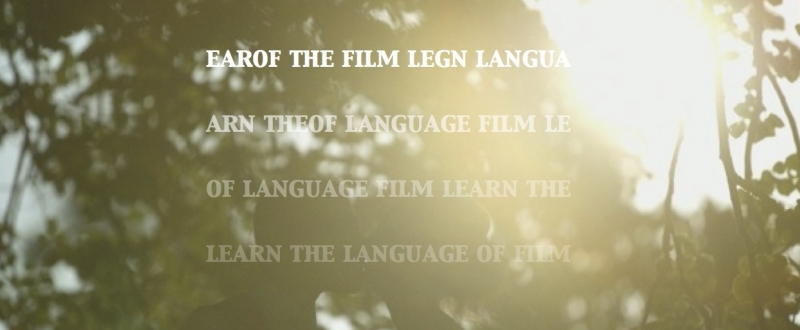 learn the language of film2
